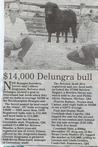 Article year 2000 Brangus Rockhampton Sale. Sale of Belview Mambo to Greendale