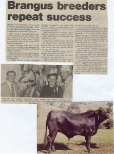 1985 News Article: Casino Beef Week open led steer carcass competition winners